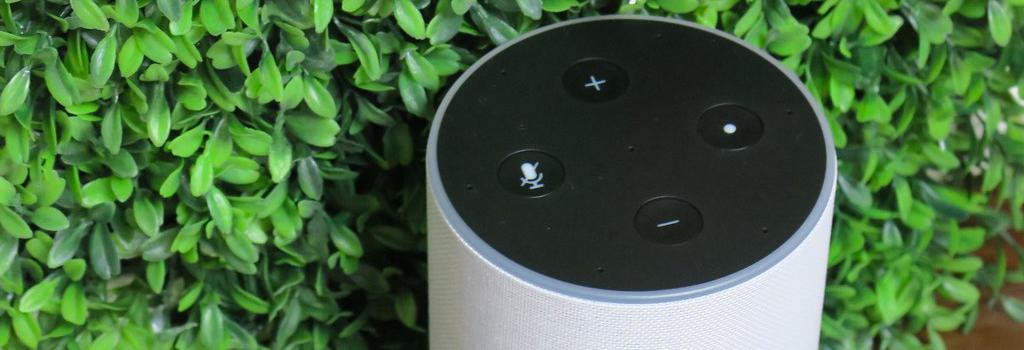 Amazon Echo e dispositivi Alexa